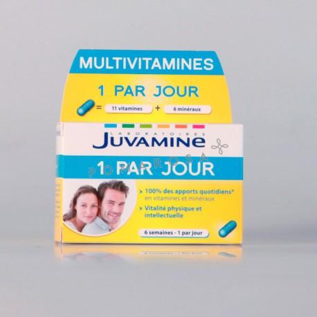 Juvamine Multivitamines 1 Par Jour 42 Gélules