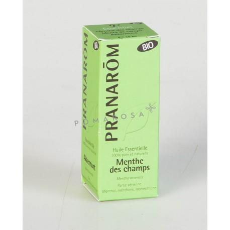 Pranarôm Huile Essentielle Bio Menthe des Champs 10 ml